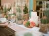 550x410xcoral-and-green-wedding_001_jpg_pagespeed_ic_uzjmoklm3r